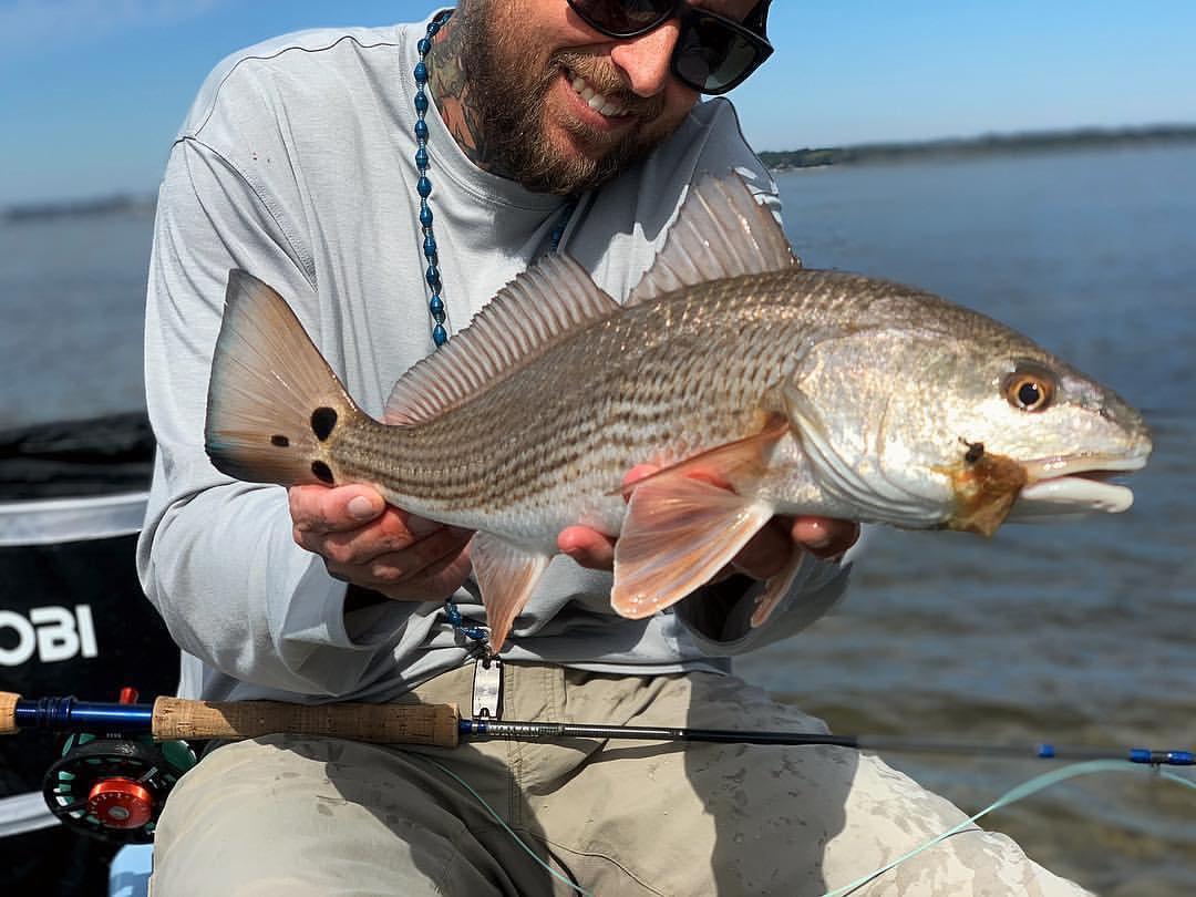 Any fish - whole day (No Tarpon)