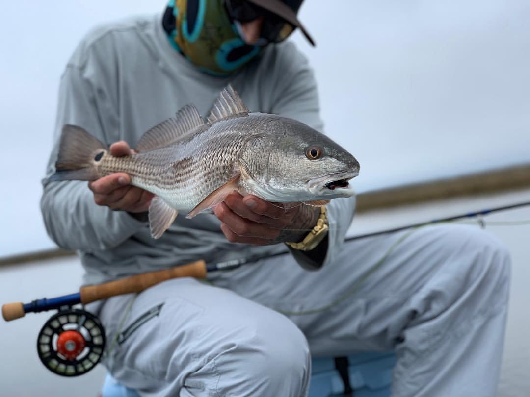 Any fish - 3/4 day (No Tarpon)