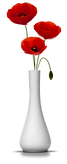 coquelicot.png