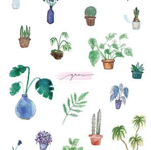 Aquarell Illustrationen