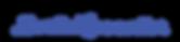 DerinLezzetler Logo.png