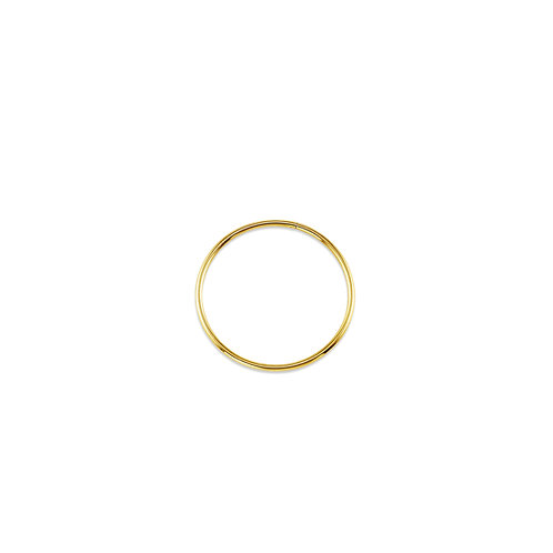 10kt Gold Bella Keeper Hoops