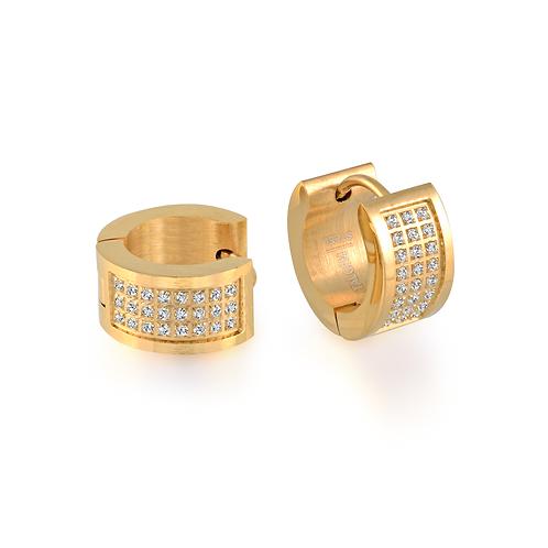 ITALGEM Multi-CZ Earrings