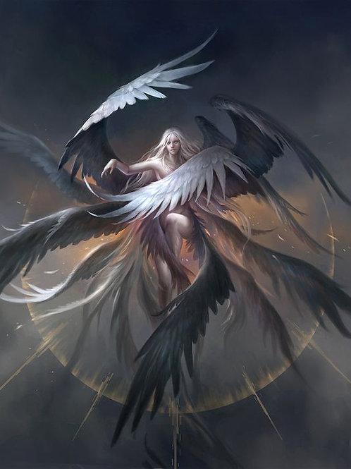 Transformação Serafim