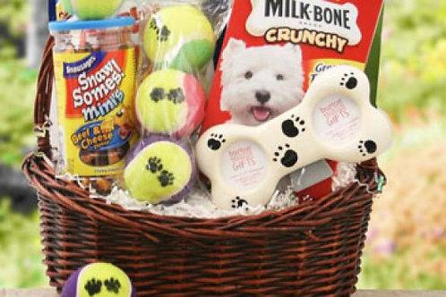10 Presente para PET's