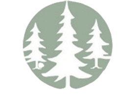 Business%2520Tree%2520Logo%2520Only_edit