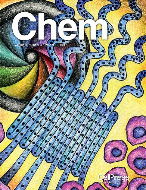 Chem Cover Art 2017
