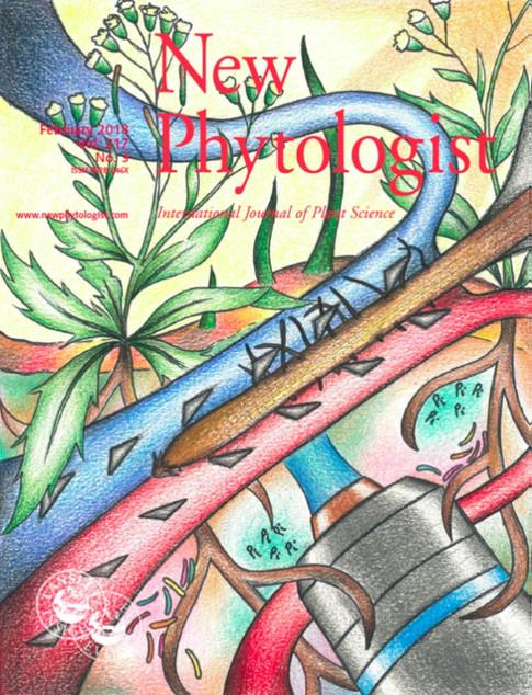 New Phytologist Cover Art 2018