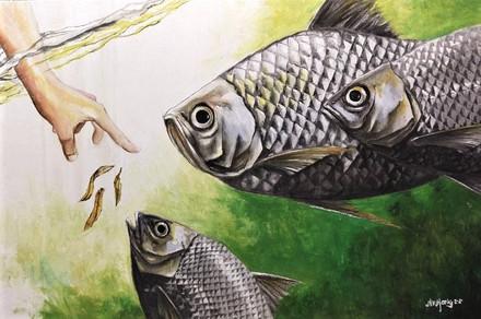 Aquaculture%20Fish%2028Nov2020_edited.jp