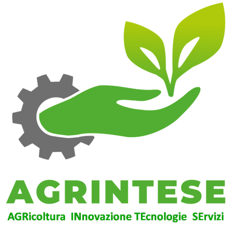 AGRINTESE.png