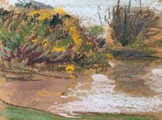 Overcast pond, Heswall Fields