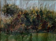 Hawthorn, Heswall Fields