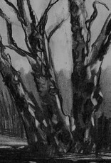Silver Birches, Heswall Dales I