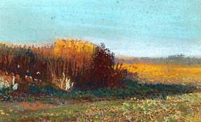Winter light, Heswall Fields
