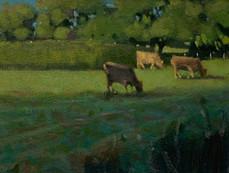 Heswall Fields