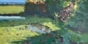 Summer, Heswall Fields