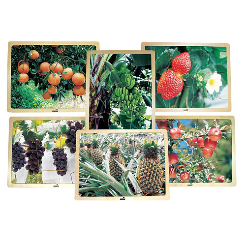 Growing Up Green®/Healthy Fruits Wooden 6-Puzzle Set