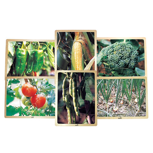 Growing Up Green®/Healthy Vegetables Wooden 6-Puzzle Set