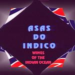 ASAS DO INDICO.png
