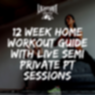 12 week home workout guide with live sem