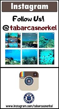 Instagram Tabarca Snorkel.jpg