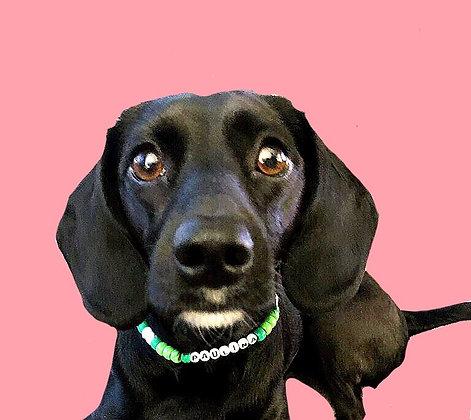 Medium Custom Dog Necklace