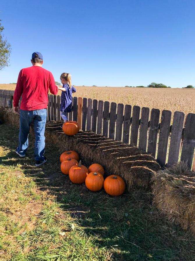 Fall at Louisburg Cider Mill