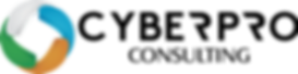 Cyberpro Consulting B_W+Logo.png