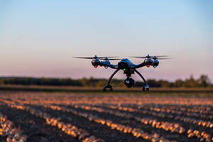 Drone-Flying-Over-an-Onions-Field-At-Sun