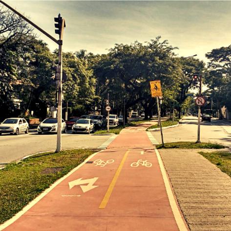 Bicycle Lane in Pinheiros