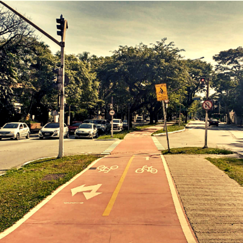 Bicycle Lane in Pinheiros