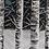 Thumbnail: FORET D'HIVER 60 x 50 cm