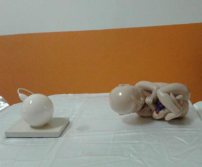Descrição da imagem: em cima de uma mesa há dois objetos: um óvulo com o espermatozoide (representando a fecundação) e um feto, que fazem parte da exposição.