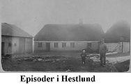 Episoder i Hestlund