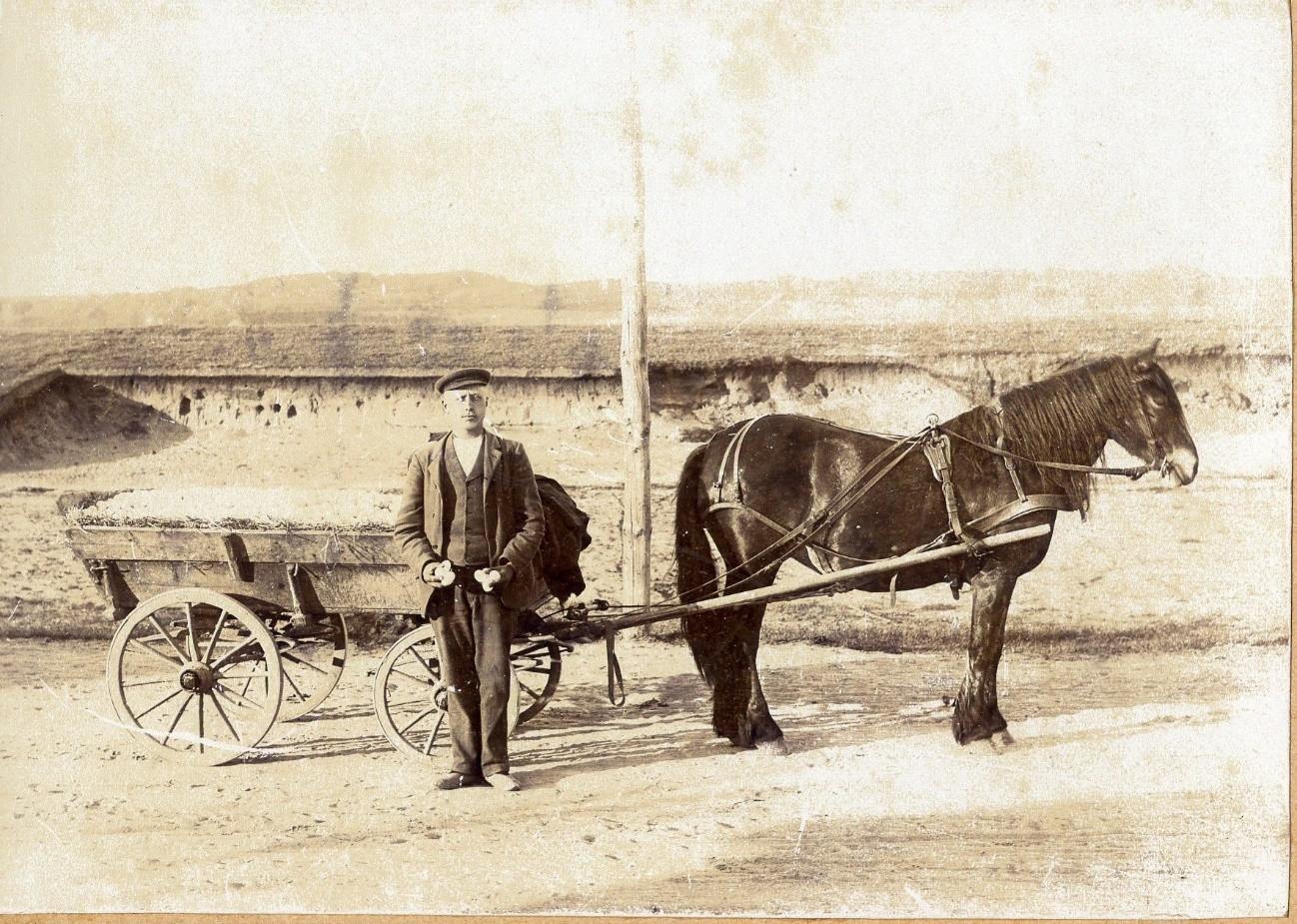 Æggetransport 1920