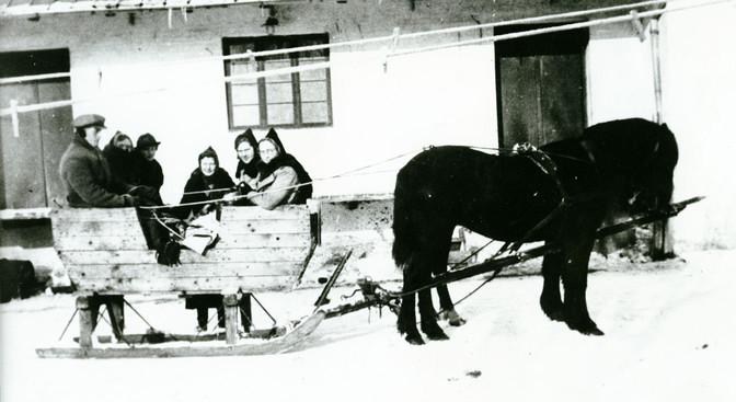 B38 Hest med kane foran Bording Foderstofforretning, Bredgade 12.