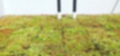 Soprema • PVC Single Ply Membrane • Opti