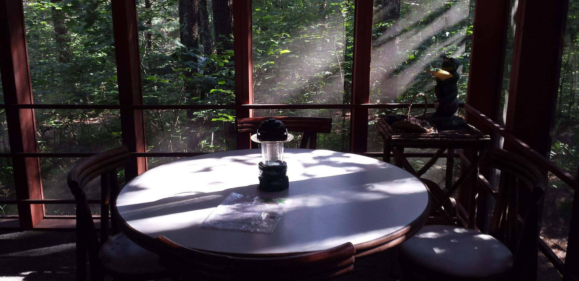 Screened In Bird House