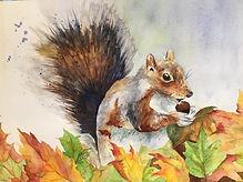squirrel in the leaves.jpg
