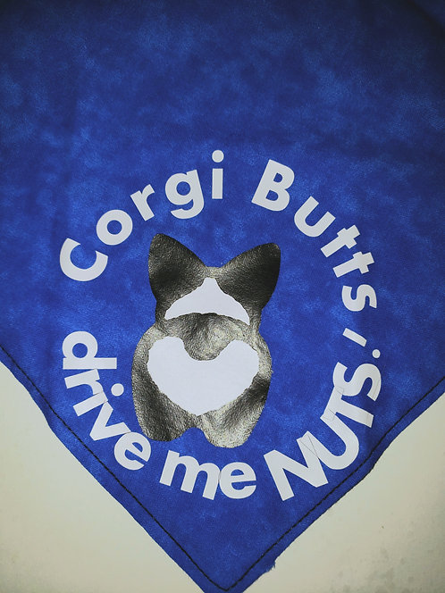 Corgi butts Drive me nuts