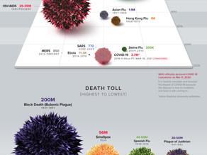 Visual Capitalists가 선정한 2020년 시각화 작품 탑20중 No.1 펜데믹(전염병)의 역사