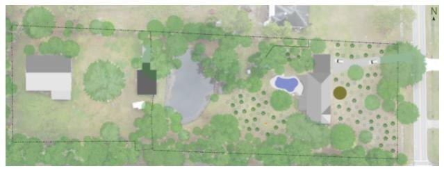 Yulee Full Property Food Forest Design