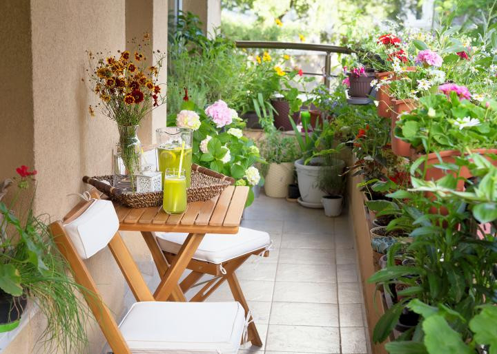 Container garden on a balcony