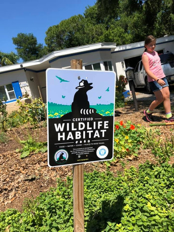 Wildlife Habitat Sign in an Urban Garden