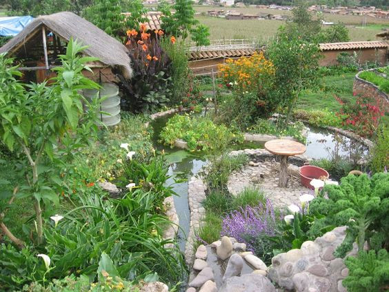 Permaculture designed yard