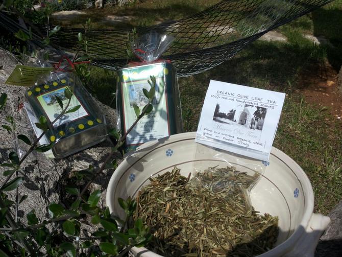 Organic Olive Leaf Tea from Masseria Due Torri