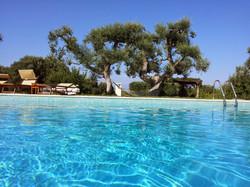 Swimming & Gardens