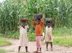 Malawi 2010-Tc-1 230