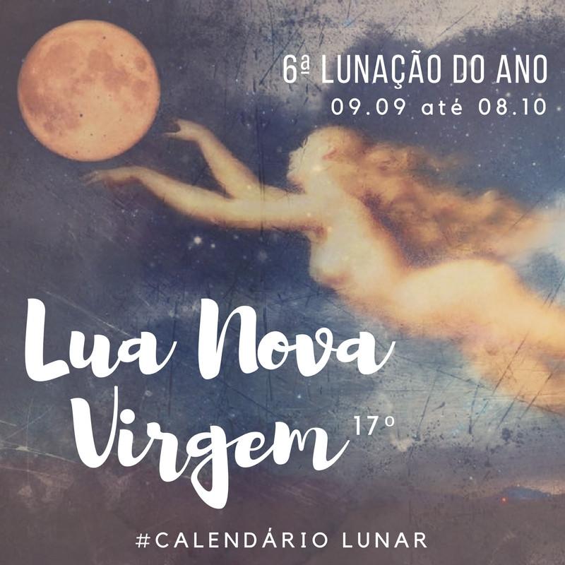 Lua Nova em Virgem