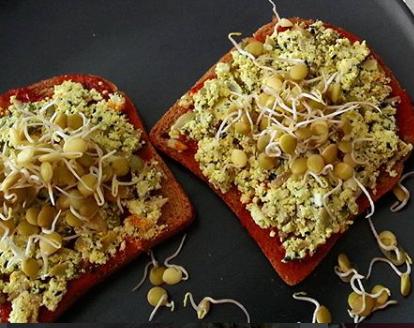 Organik yeşil mercimek filizli açık sandviç